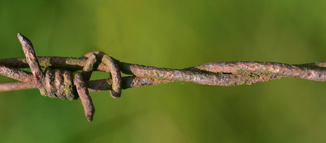barbed-wire-3538584_960_720